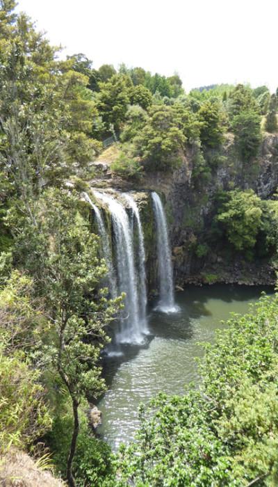 whangarei Falls web P1020156